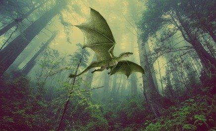 dragon-3462724_1920