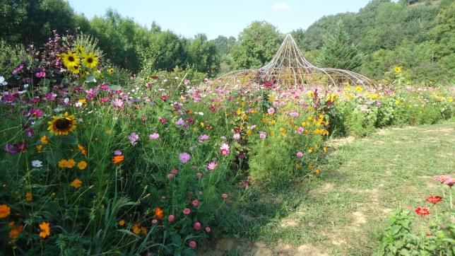 flowergarden-3